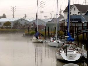 Mist on the Petaluma River Turning Basin