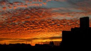 Petaluma Sunrise