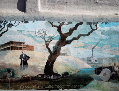Petaluma Streets: Murals